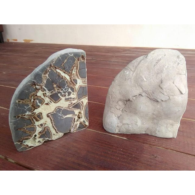 Septarian Concretion Bookends - a Pair For Sale - Image 4 of 6