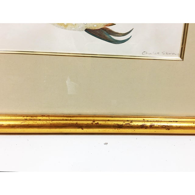 Rainbow Porgy & Sea Robin Goauche Painting With Gold Frame For Sale - Image 4 of 5