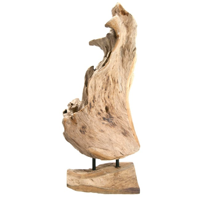 Indonesian Driftwood Fragment on Stand - Image 5 of 6