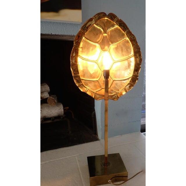 Casa Bique Brass Tortoise Back Light Floor Lamp For Sale - Image 4 of 5
