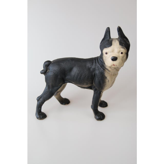 Vintage Cast Iron Boston Terrier Dog Doorstop Chairish