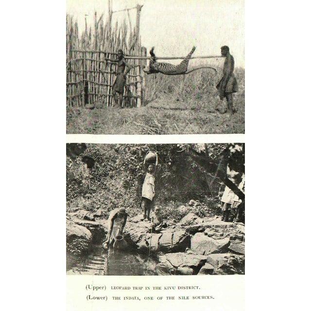 Fresh Tracks in the Belgian Congo, Hermann Norden - Image 2 of 2