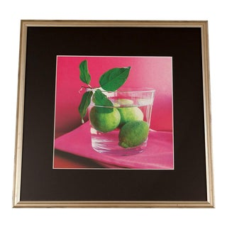 Citrus Artwork Poster in Frame For Sale