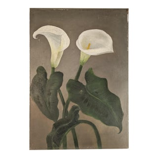 Antique Oil Painting of Calla Lily Flowers on Board