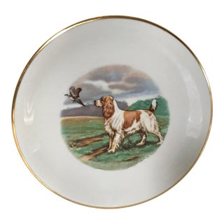 Vintage Mid-Century Bavarian German Porcelain Dog Plate For Sale