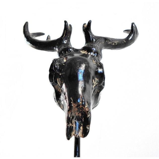 Ebony Deer Skull on Pedestal Sculpture For Sale In Chicago - Image 6 of 11