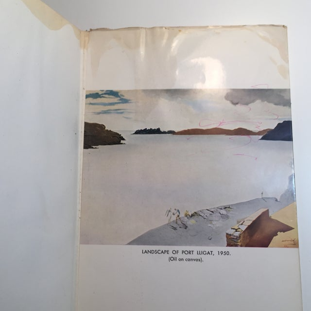 "Black ""A New Introduction to Salvador Dali"" 1960 Book For Sale - Image 8 of 10"