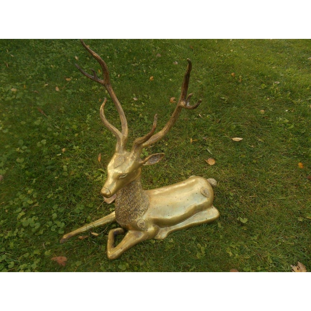 Mid-Century Stag Deer Brass Statue - Image 3 of 8