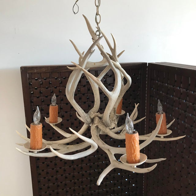 Late 20th Century Vintage Late 20th Century Five-Light Antler Chandelier For Sale - Image 5 of 7