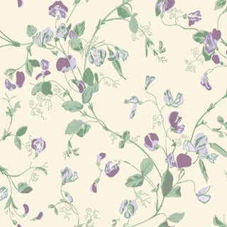 Cole & Son Sweet Pea Classic Botanical Style Wallpaper Sample For Sale