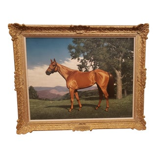 Realist Sporting Painting of Racehorse Listed Artist Jean G. Mitchell For Sale
