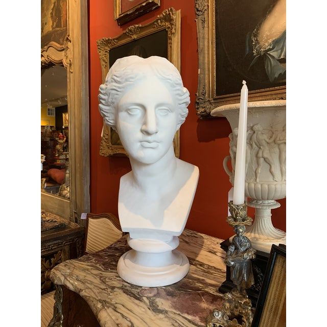 Neoclassical Style Large Plaster Bust of Aphrodite For Sale - Image 11 of 11