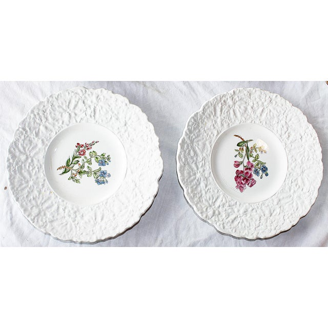 Royal Couldon Dessert Plates, Set of 8 For Sale - Image 4 of 8