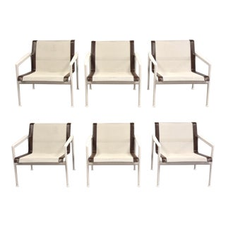 Richard Schultz Knoll 1966 Collection Lounge Chairs- Set of 6 For Sale