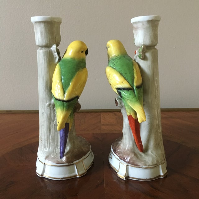 A fine pair of vintage porcelain parrot candle holders made in Germany. This pair is in excellent condition with no chips...
