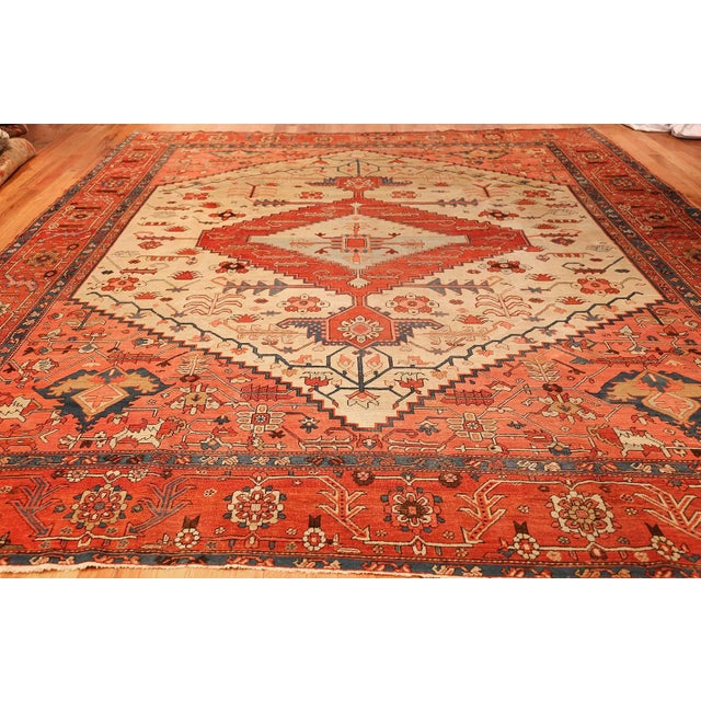 Antique Serapi Persian Ivory Rug - 11′ × 12′6″ For Sale In New York - Image 6 of 10