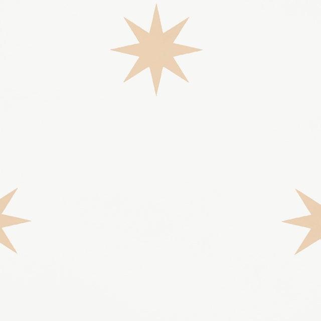 Contemporary Schumacher Stargaze Wallpaper in Bronze For Sale - Image 3 of 4