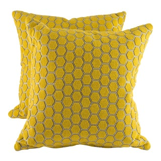"18"" X 18"" Osborne and Little Ledoux Down Pillows For Sale"
