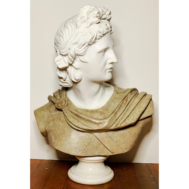 A fine large bust sculpture of Greek god Apollo of Belvedere. The sculpture is over a 300lb, heavy solid marble. Highly...