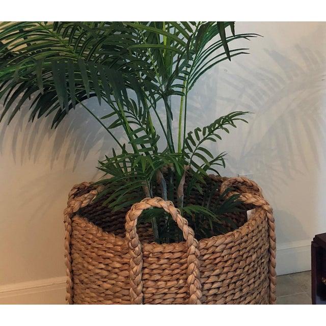 Ralph Lauren 6 ft silk palm in Ralph Lauren basket
