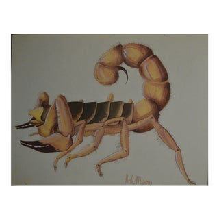 Insect Scorpio Water Color Paper Framed Still Life Painting Signed Hal Mason For Sale