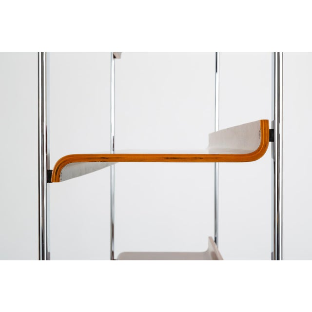 Brown Zebrawood and Chrome Bookshelf by Peter Protzmann for Herman Miller For Sale - Image 8 of 13