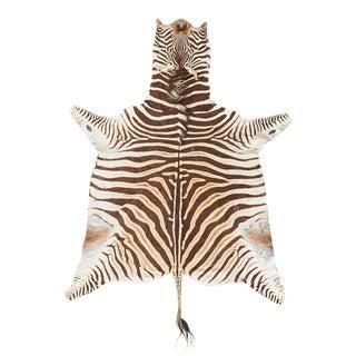 Authentic African Zebra Hide Carpet Rug For Sale