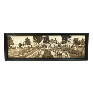 Early 20th Century Vintage Garden Panoramic Photograph For Sale