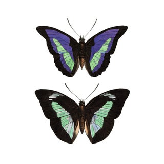 Art Deco Butterflies in Chartreuse and Purple Art For Sale