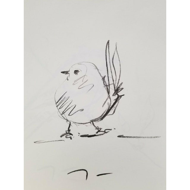 Original Charcoal Paper Sketch Drawing of Bird by Jose Trujillo For Sale