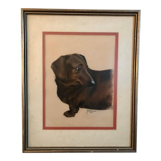 Dachshund Pastel Drawing For Sale
