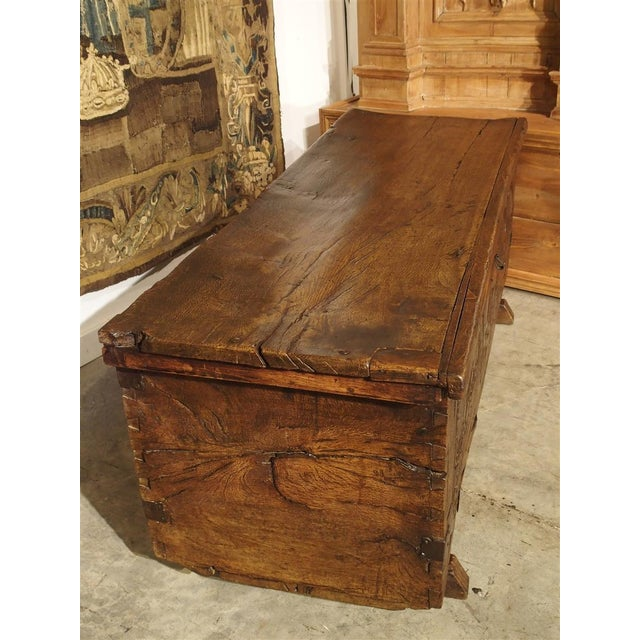 17th Century Large Carved Oak Plank Trunk From the Basque Country, Circa 1650 For Sale - Image 5 of 13