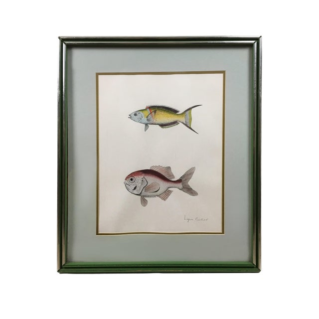 Vintage Original Freshwater Fish Couplet Gouche Painting For Sale In New York - Image 6 of 6