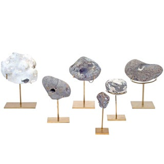 Collection of Mounted Danish Sea Stones For Sale