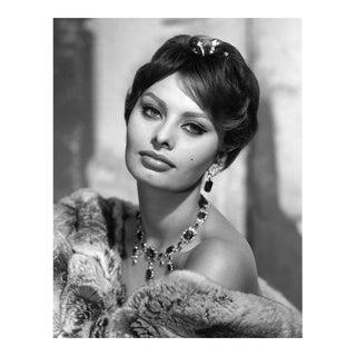 Sophia Loren 1959 For Sale