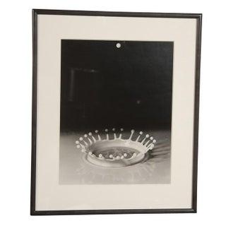 "Harold Edgerton ""Milk Drop Coronet"" Gelatin Silver Print For Sale"