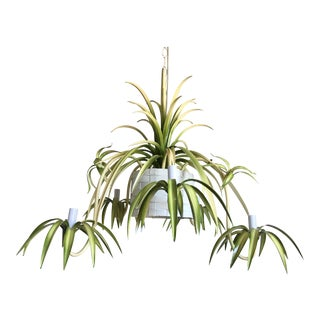 Italian Spider Plant Chandelier For Sale