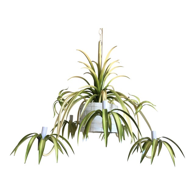 Italian Spider Plant Chandelier - Image 1 of 9