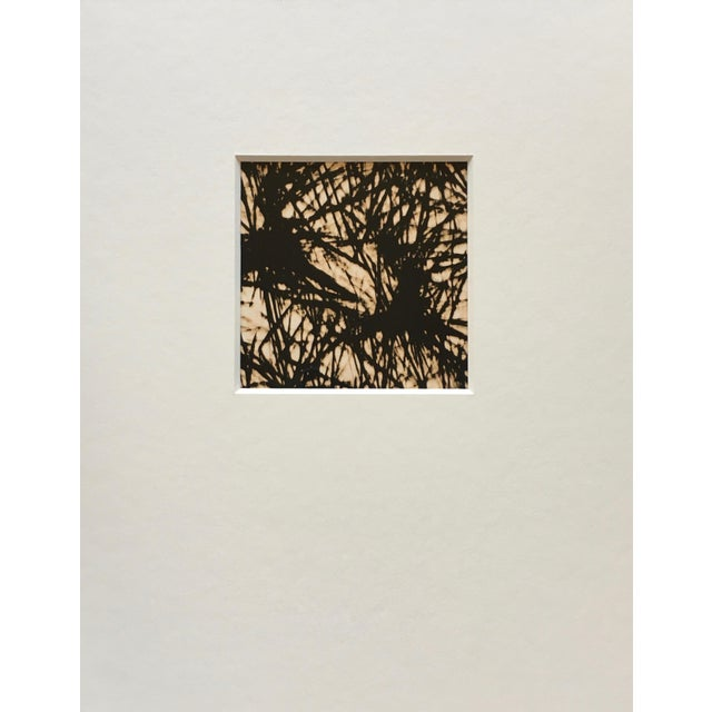 Unique abstract photo negative of pine needles. Taken in the late 1970s and printed in the early 1980s. Recently framed in...