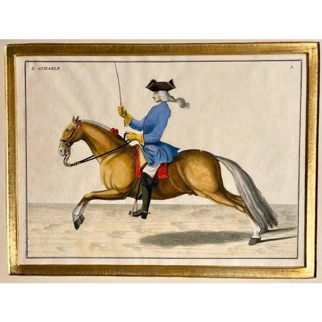 1900 - 1909 Four Engravings of Horse Riders L' Aimable, Le Joli, Le Sanspareil, Le Poupon For Sale - Image 5 of 11