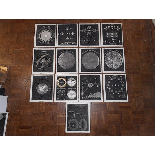 Antique 19th Century Astronomical Lithographs-Celestial Maps/Charts-Set of 13 For Sale In Cincinnati - Image 6 of 7