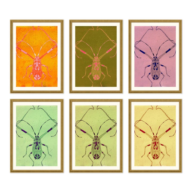 Orange Long Legged Bug Set of 6 by Jessica Molnar in Gold Frame, Small Art Print For Sale - Image 8 of 8
