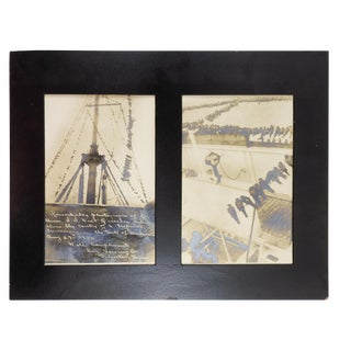 1926 Birds During Hurricane Photographs - a Pair For Sale
