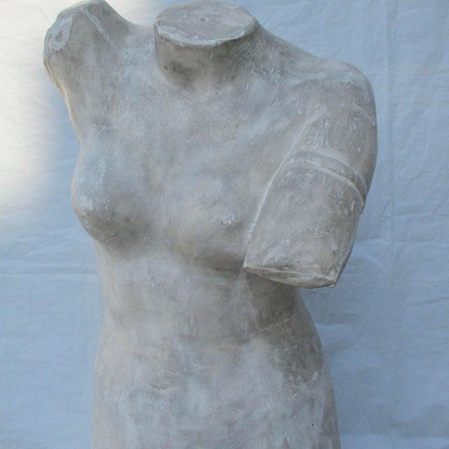 Antique Plaster Cast of Greek Goddess Torso For Sale - Image 4 of 11