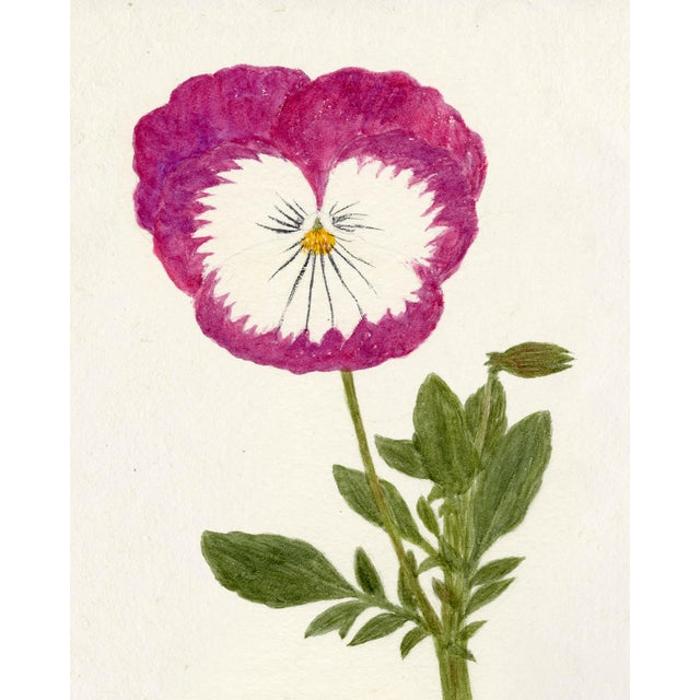 Contemporary Hubbard Flower, Small: 8053 Artwork, Unframed Artwork For Sale - Image 3 of 3