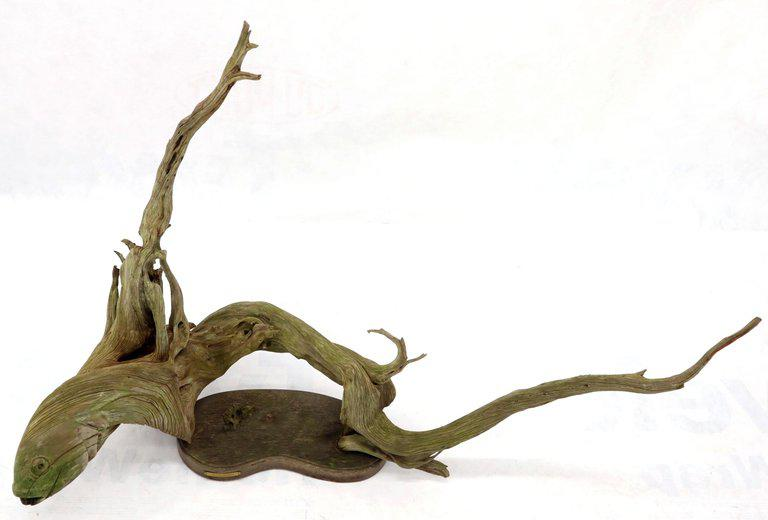 Large branch of driftwood original shape