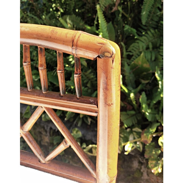 Brown Vintage Mid Century Brighton Tiger Bamboo Chairs- A Pair For Sale - Image 8 of 13