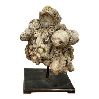 Antique Fruit Fragment on Stand For Sale