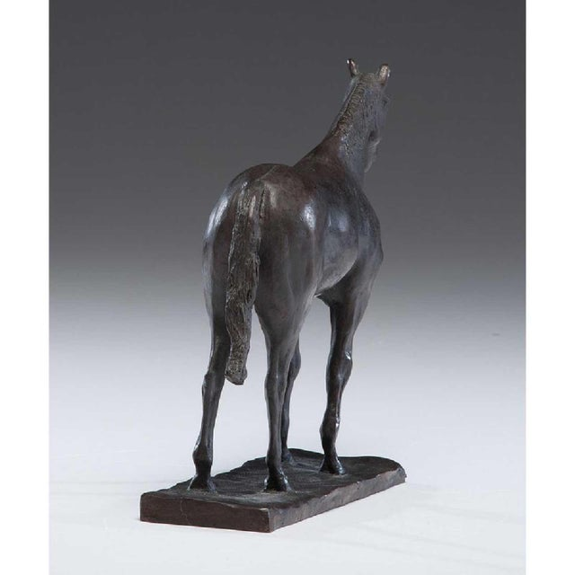 Bronze Horse For Sale - Image 4 of 6