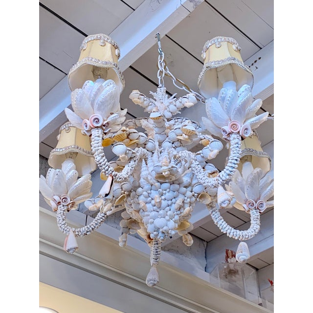 Ivory Small Five-Light Shell Adorned Chandelier For Sale - Image 8 of 9